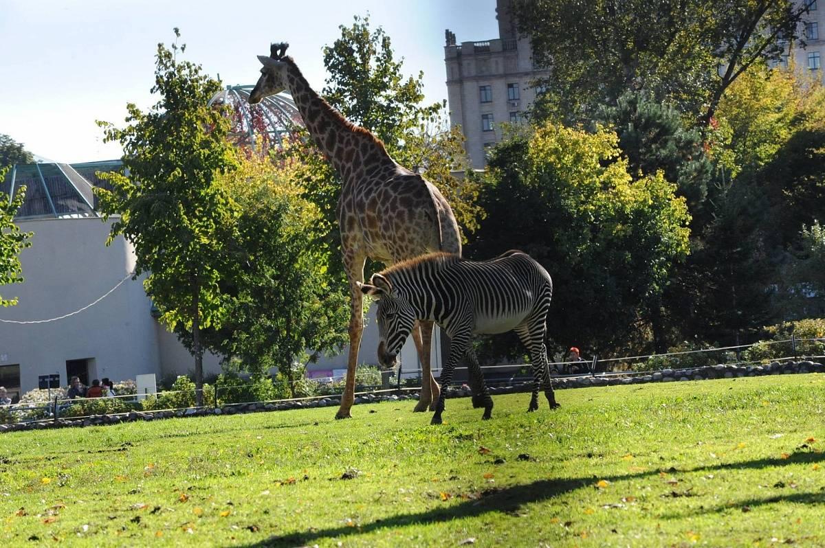 12 самых необычных зоопарков