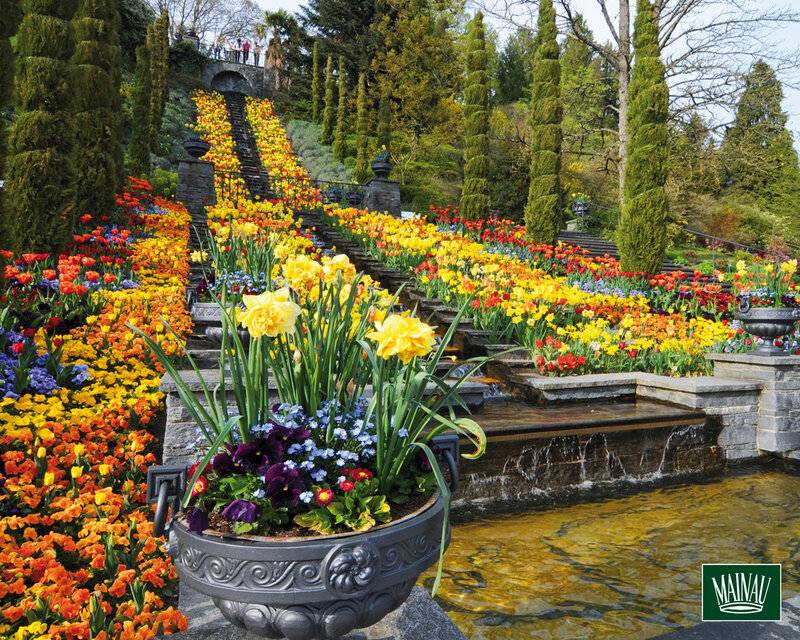 Боденское озеро (германия) - важная информация для туристов