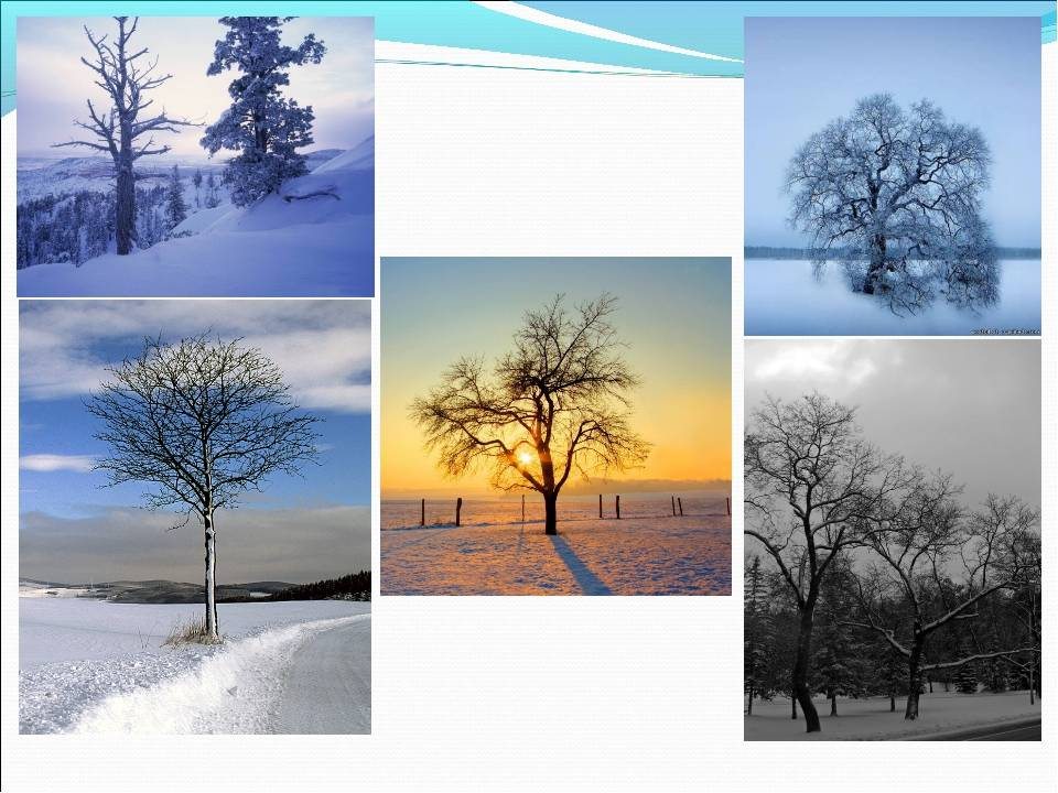 Погода в германии по сезонам
