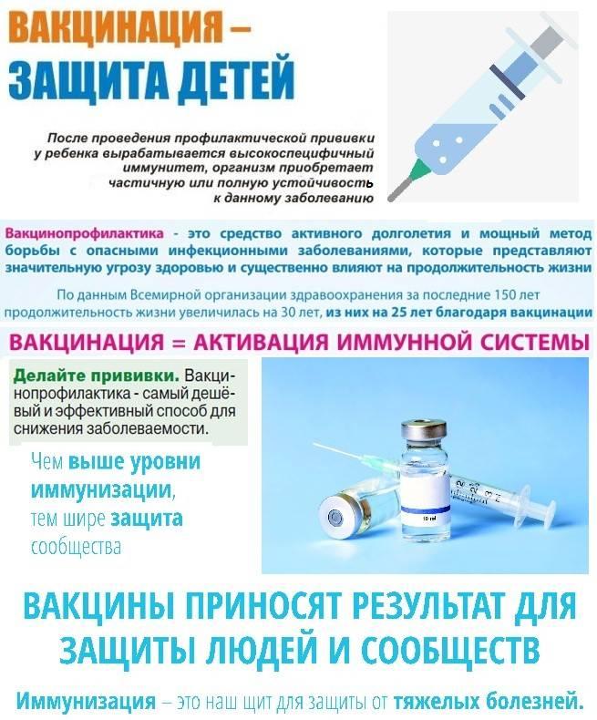 Вакцинация от коронавируса в испании проходит с соблюдением запланированных сроков
