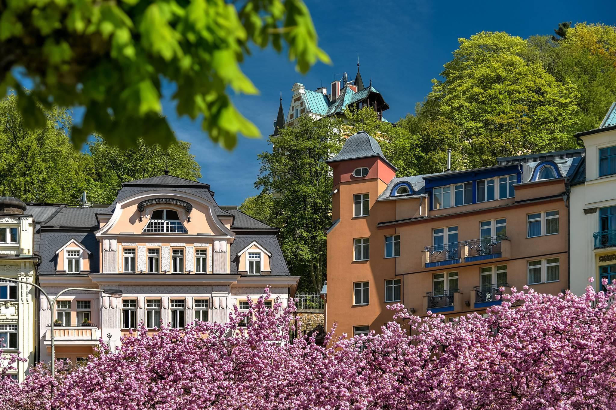Санатории чехии цены 2020 с лечением - set travel set travel санатории чехии цены 2020 с лечением - set travel