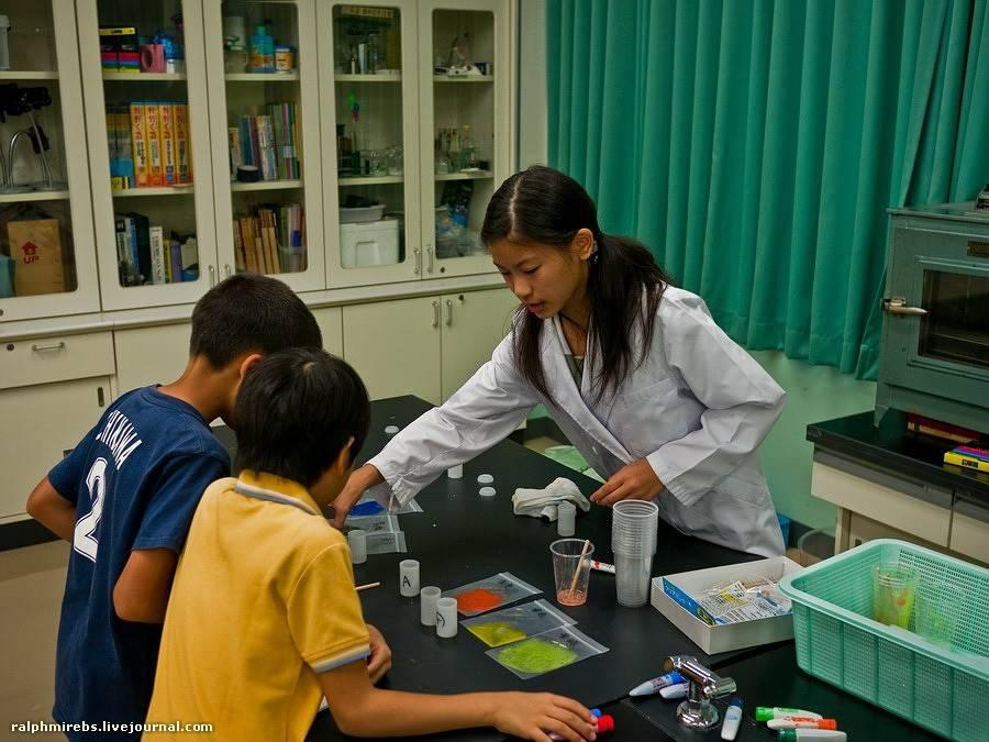 Высшее образование в японском университете: особенности и перспективы