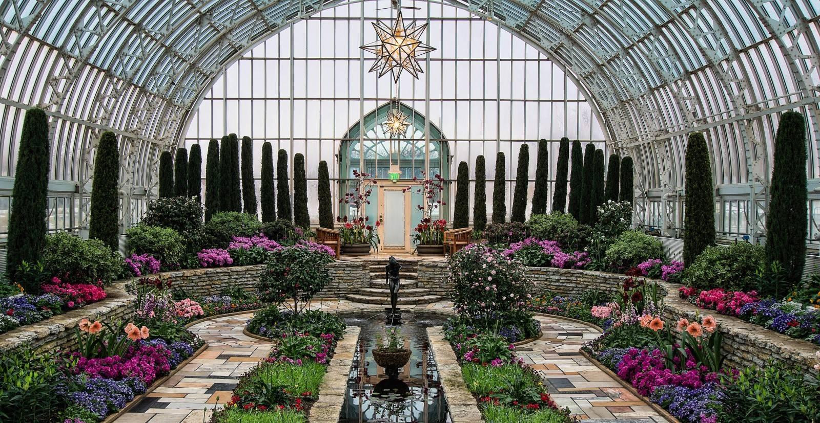 Прекрасный ботанический сад берлина: какие особенности