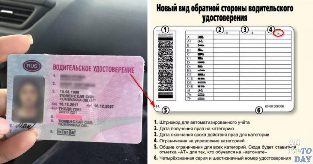Получение иностранцем водительских прав в США