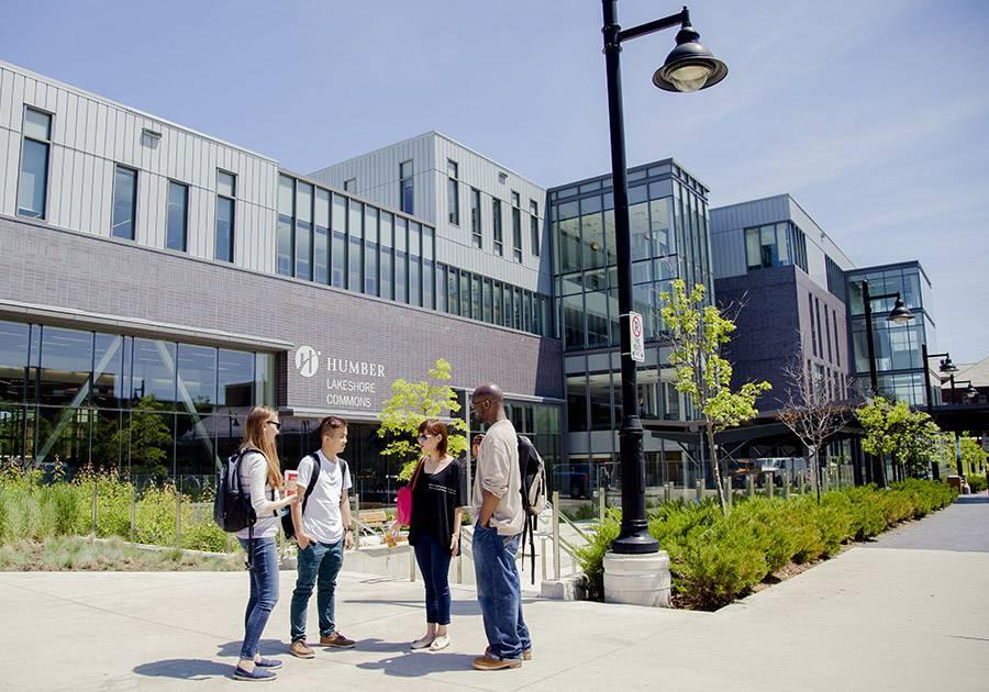 Studyqa — университет торонто — пляж миссиссога — канада: стоимость, рейтинг, программы, требования к поступающим