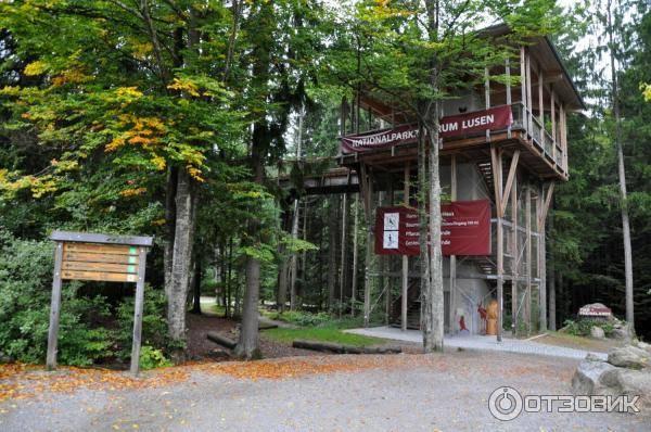 """Парк """"Баварский лес"""" – место единения с природой"""