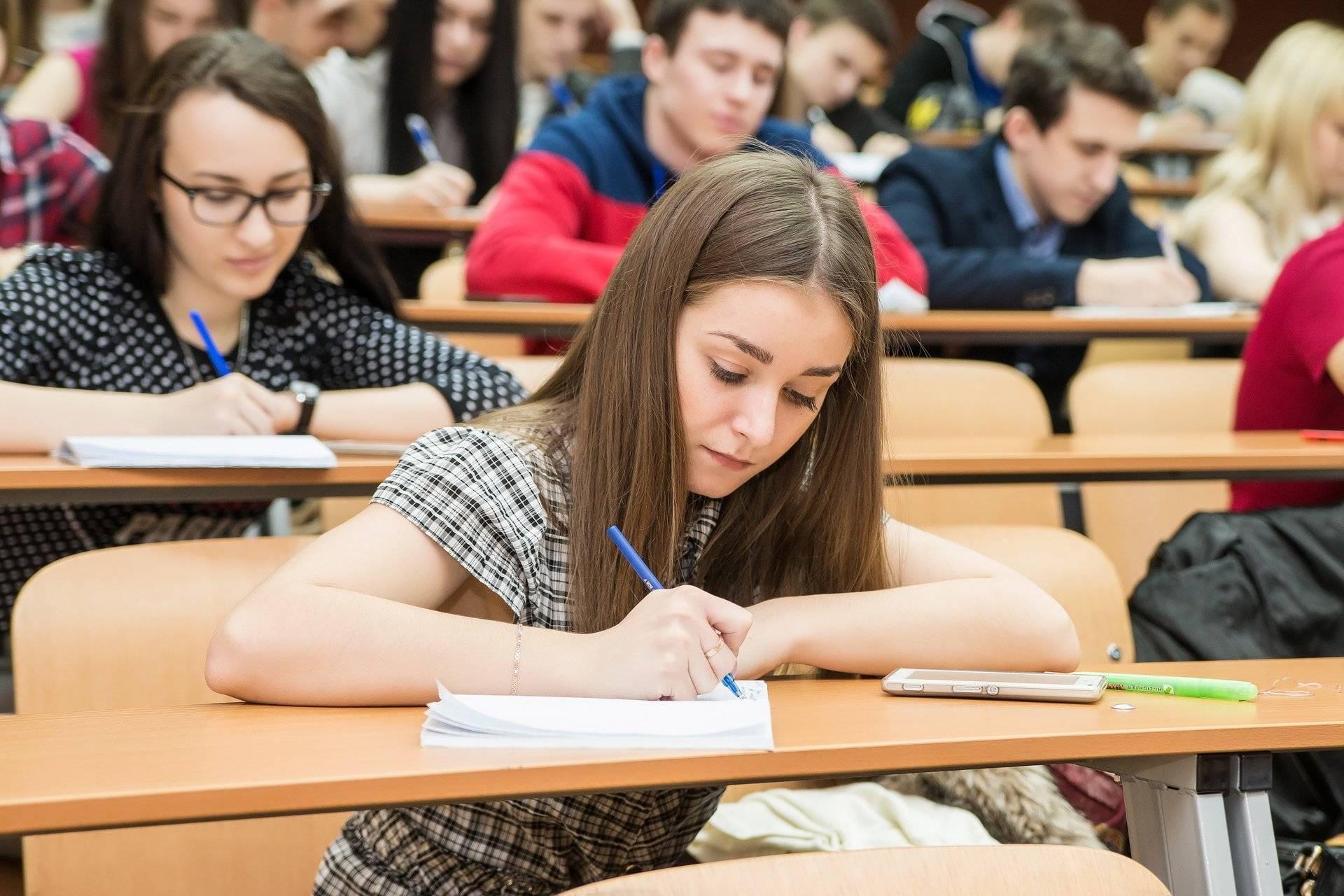 Как устроено высшее образование в сша