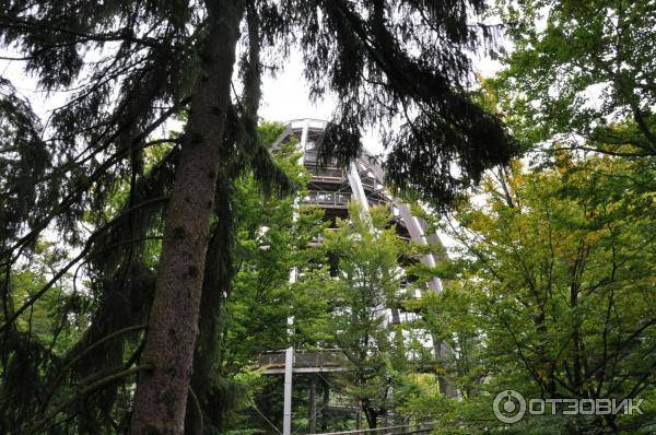 Национальный парк баварский лес (германия)