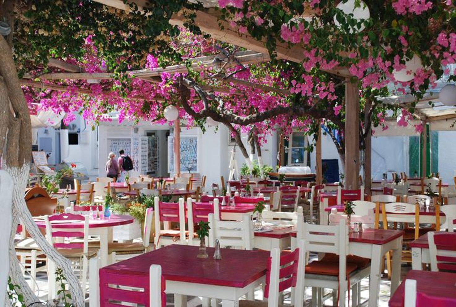 Какой язык в греции: советы путешественникам в 2021 году