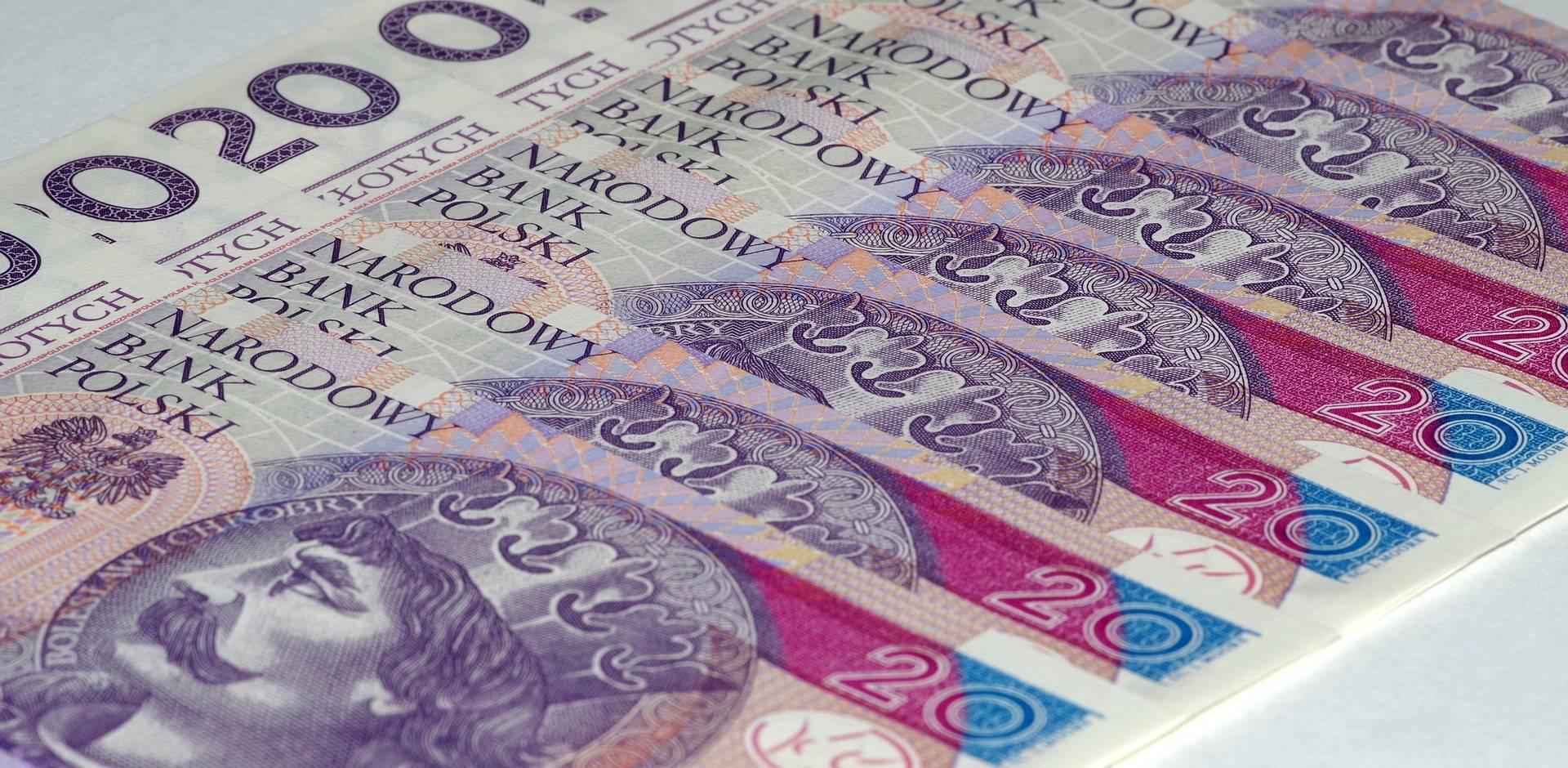 Какая денежная единица польши: евро или злотый? :: syl.ru