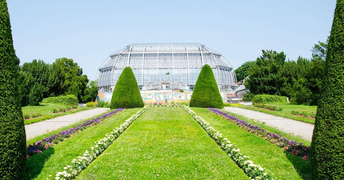 Берлинский ботанический сад: режим работы и стоимость билета
