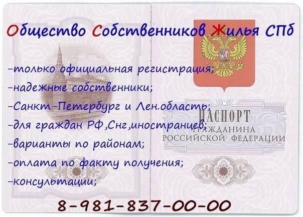 Получение гражданства польши в 2021 году, что нужно, стоимость, документы   provizu.ru