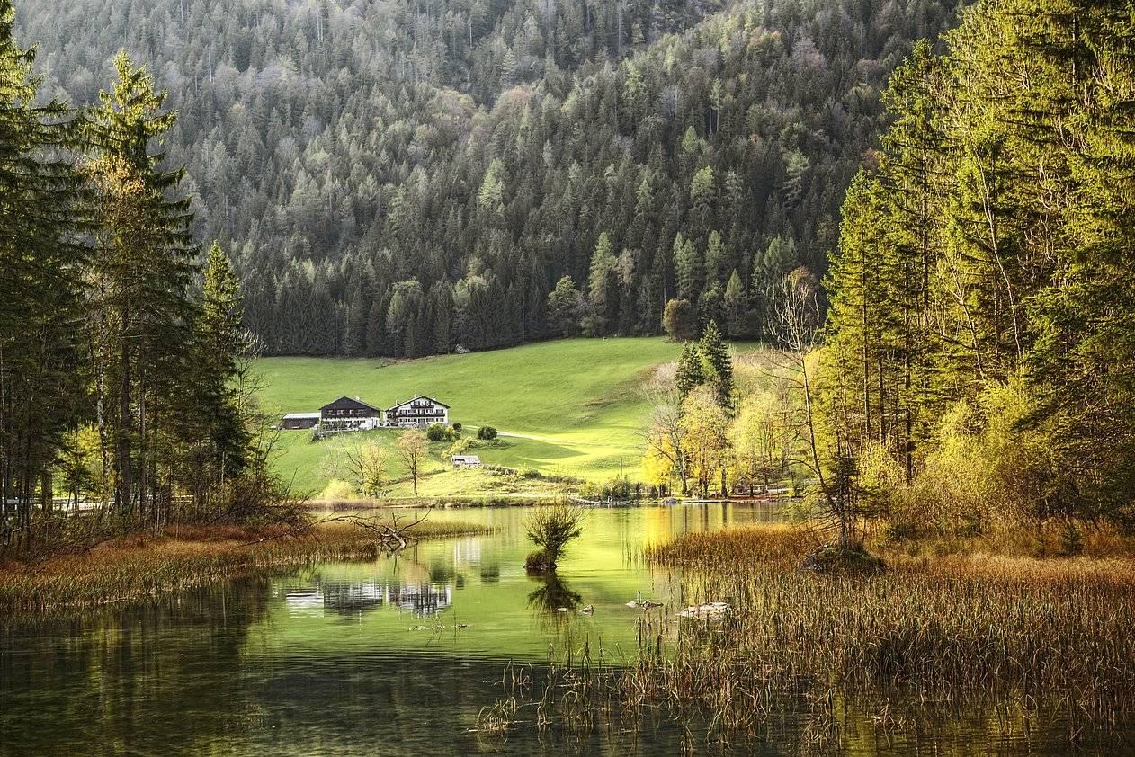 Шварцвальд или «черный лес» германия   чудеса природы