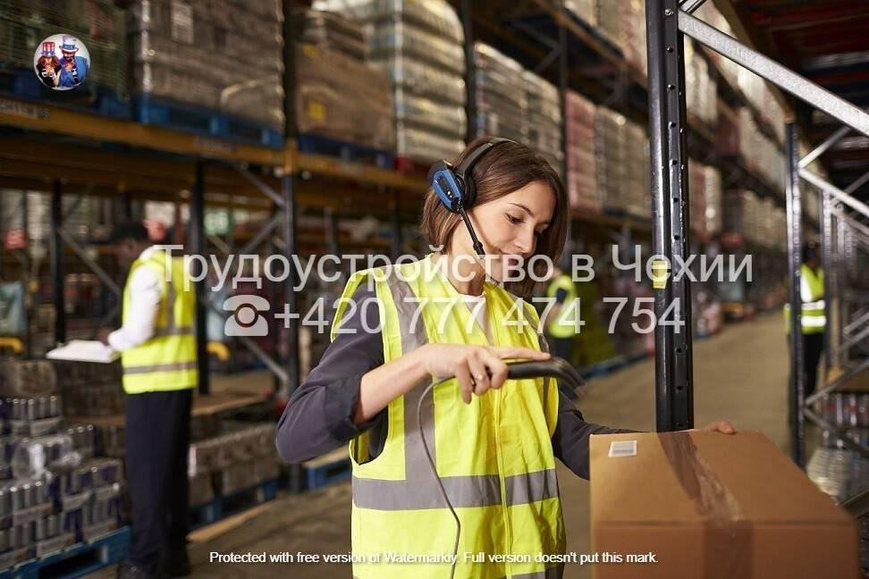 Перспективы работы в чехии для иностранцев: все нюансы успешного трудоустройства
