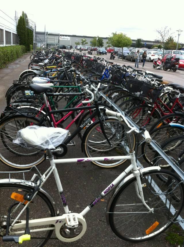 Кто путешествовал по рейнской велодорожке или по германии на велосипеде? - советы, вопросы и ответы путешественникам на трипстере