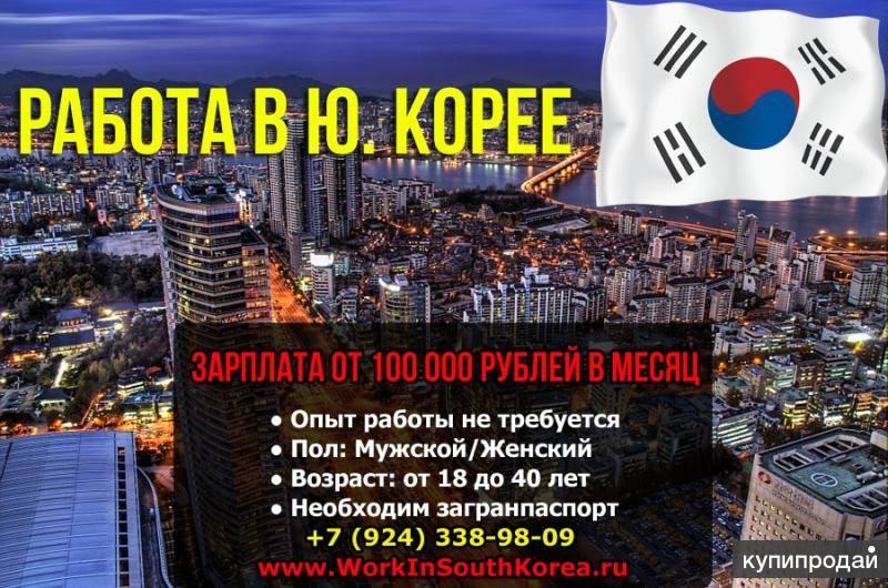 Как живут русские в южной корее в 2021 году