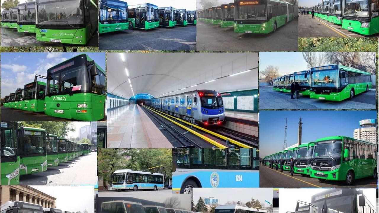Транспорт в китае: поезда и другие способы путешествия по стране