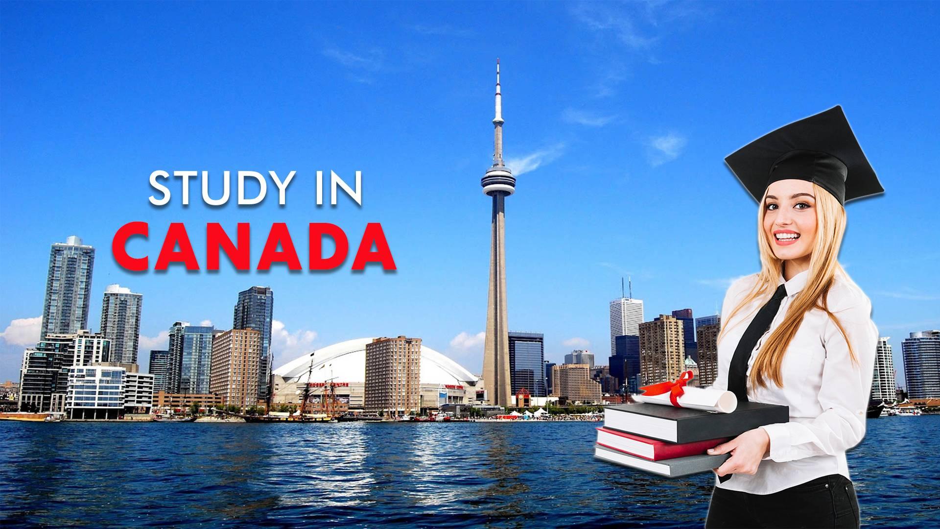 Study, work and stay in canada — ответы на вопросы по материалам государственного сайта канады | образование в канаде, курсы английского, колледж, университет, стажировки, последипломное обучение
