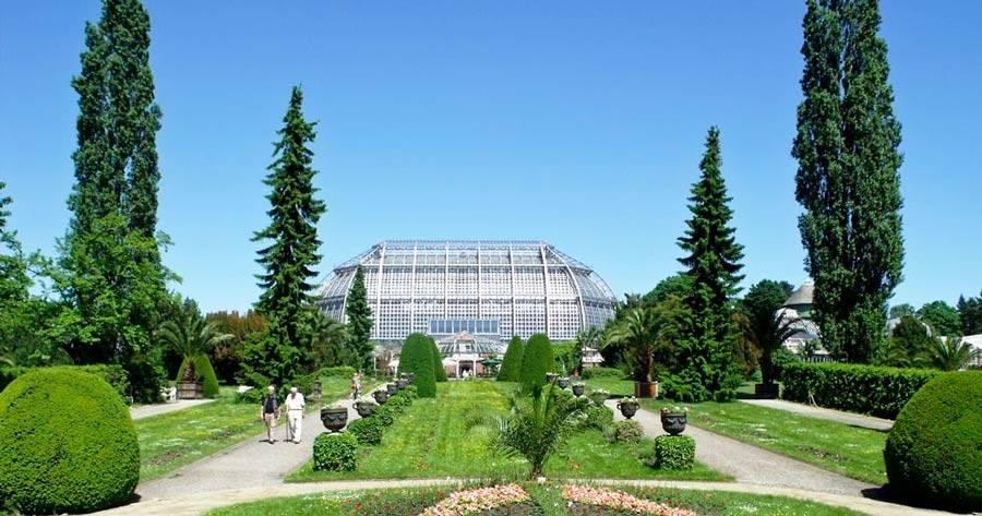 Берлинский ботанический сад - вики