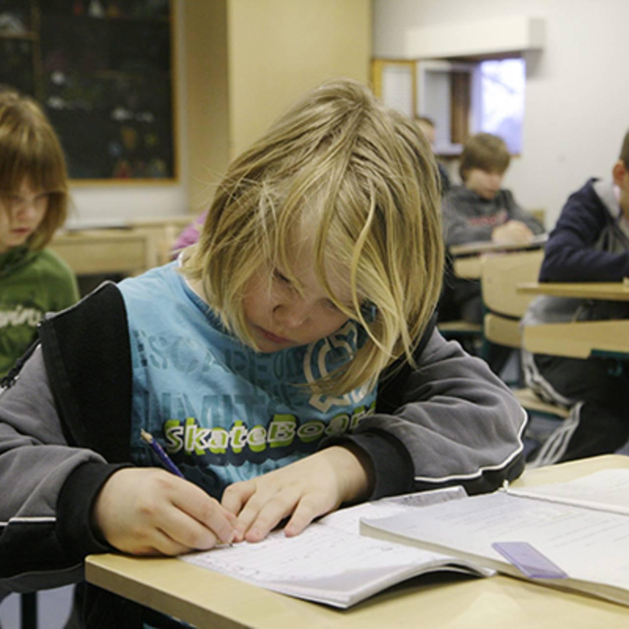Школы в финляндии: как учатся делит, уровни образования