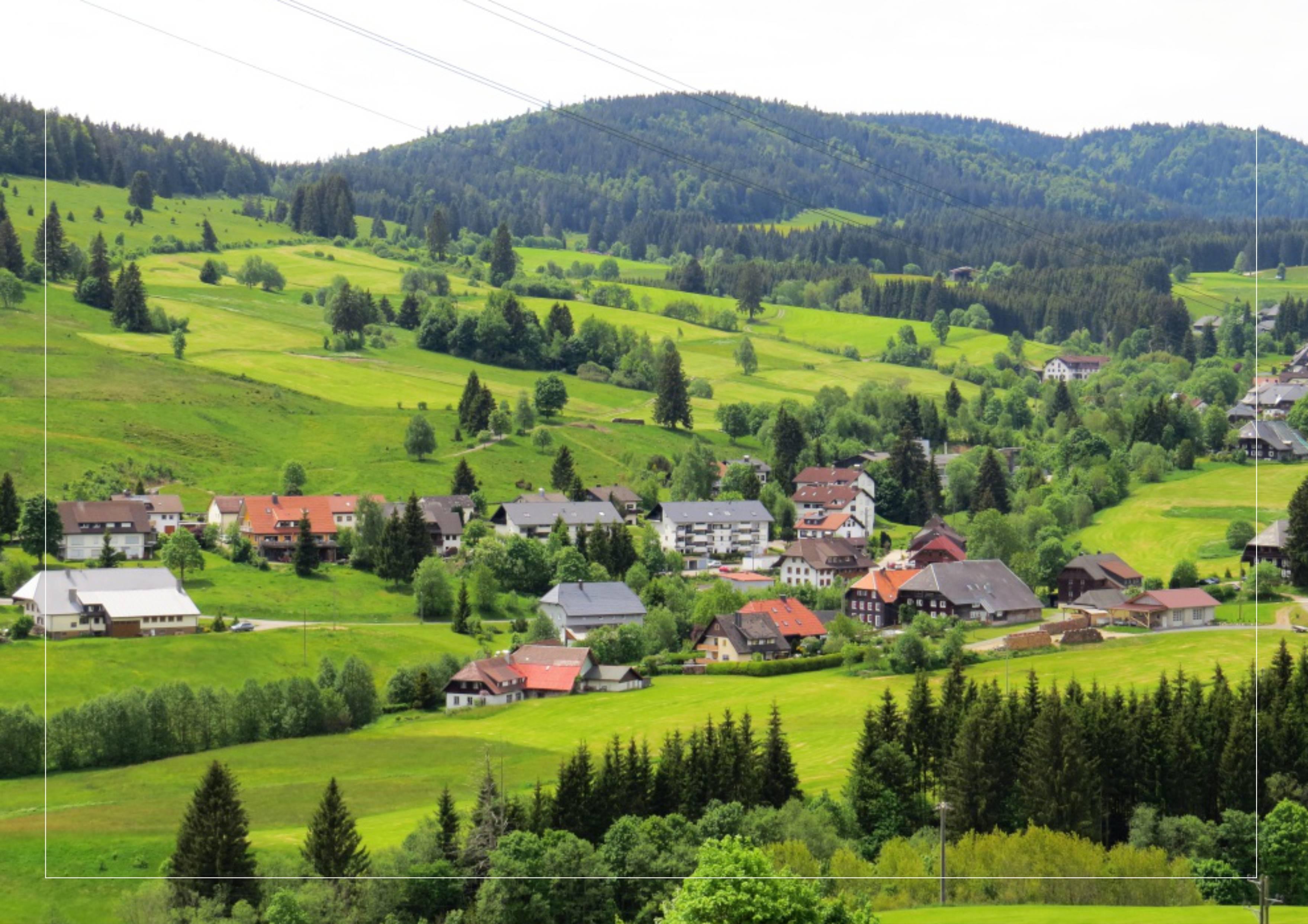 Шварцвальд. черный лес: страна сказок - статья мандрии