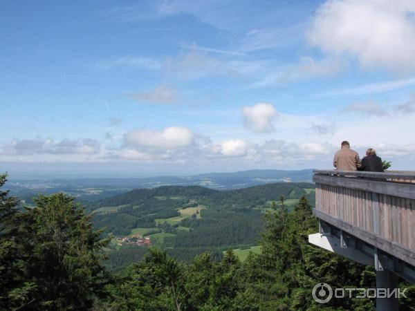 Дорога в облака: 7 самых известных туристических троп германии, проложенных в кронах деревьев - федеральное министерство иностранных дел германии