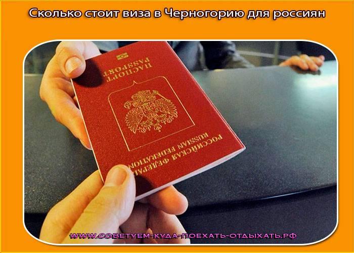 Работа в черногории – масса возможностей было бы желание…