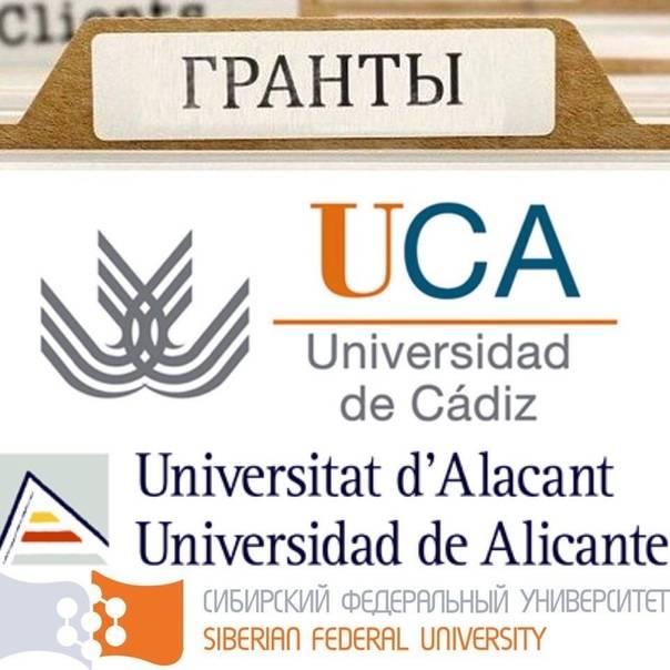 Высшее образование в италии: инструкция для граждан стран снг. одна статья