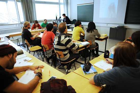 Языковые курсы в новой зеландии | kiwi education