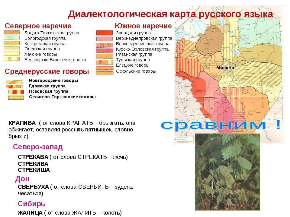 Интересные факты о болгарии
