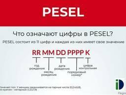 Варианты куда вложить деньги для пассивного дохода в 2021 году в россии