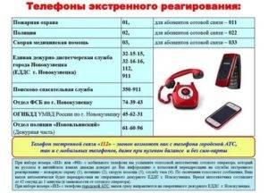 2 сервиса для бесплатных международных звонков - лайфхакер