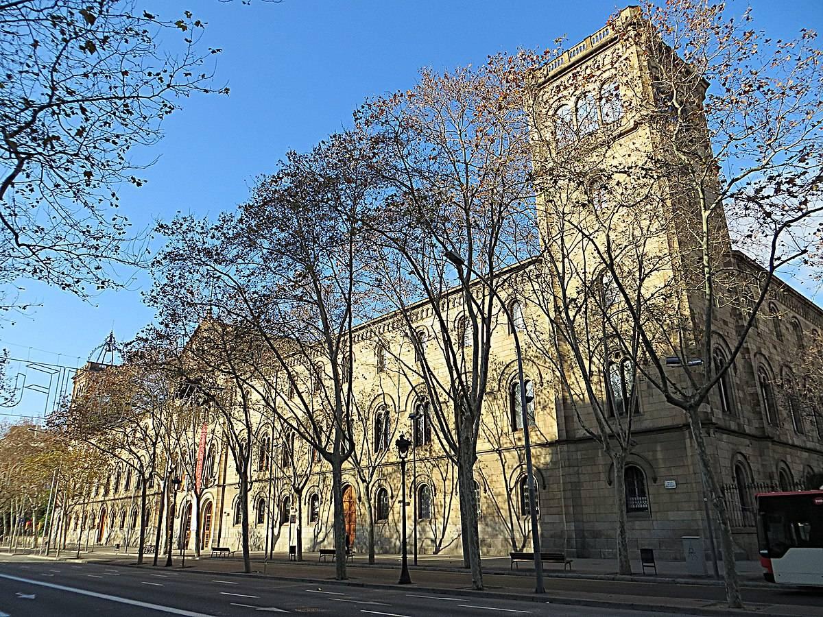 Высшее образование в испании в 2020 году. что необходимо?