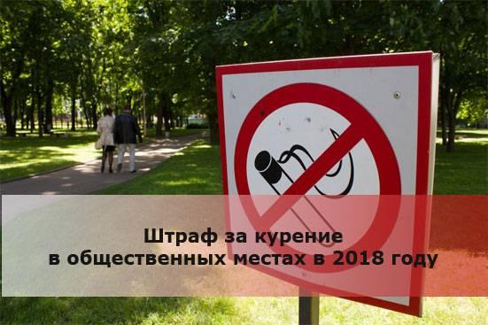 Курение в квартире в 2021: можно ли курить? закон, штрафы, советы