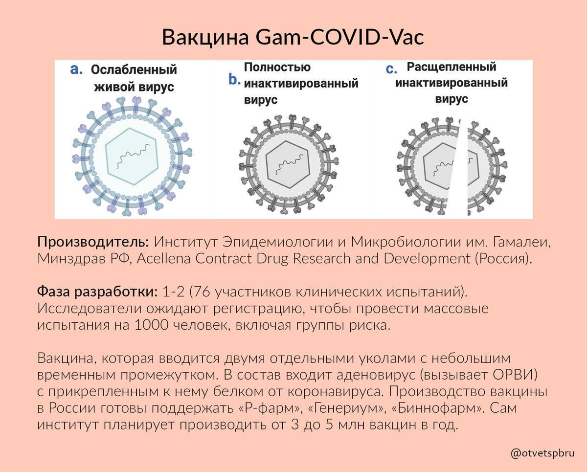 Почему страны азии не нуждаются в жестких ограничениях и могут контролировать распространение коронавируса