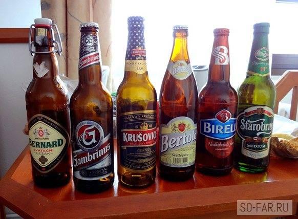 Чешское пиво: история, сорта и известные марки