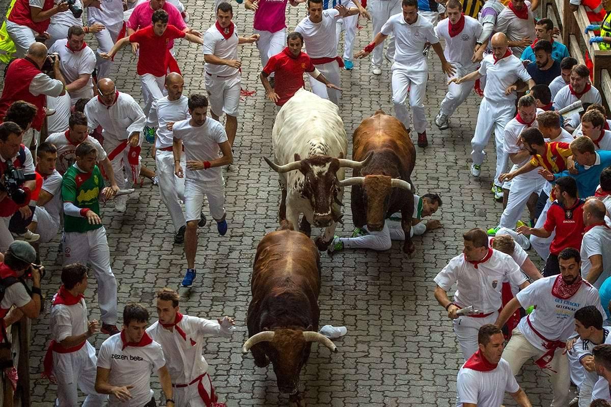 Фестиваль сан-фермин в памплоне: бег с быками
