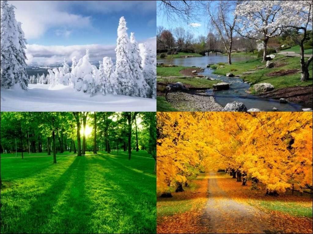 Климат во франции зимой, весной, летом, осенью