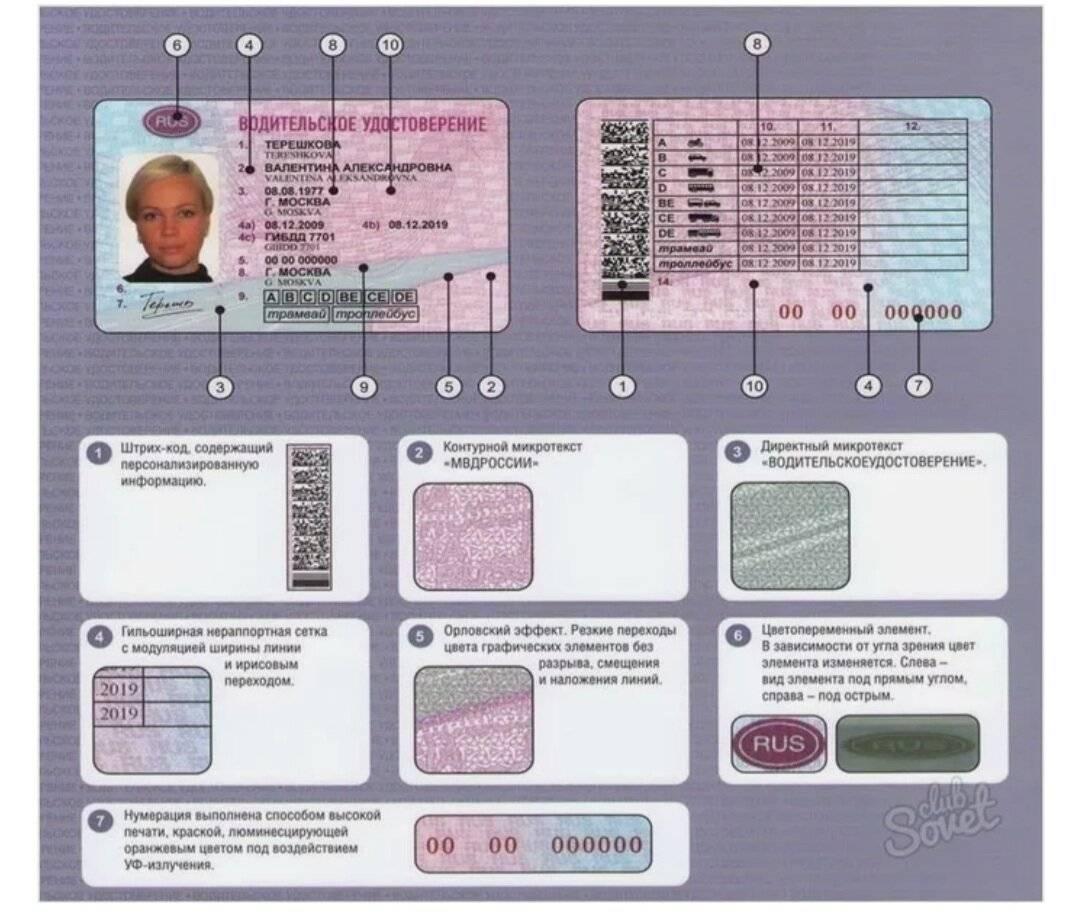 Международные водительские права в сша