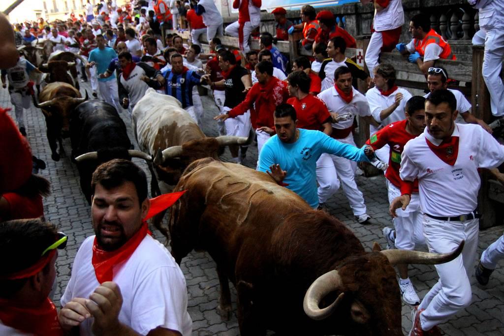 Сан-фермин в памплоне 2021: фото, отзывы, даты забега быков в испании, отели рядом на туристер.ру