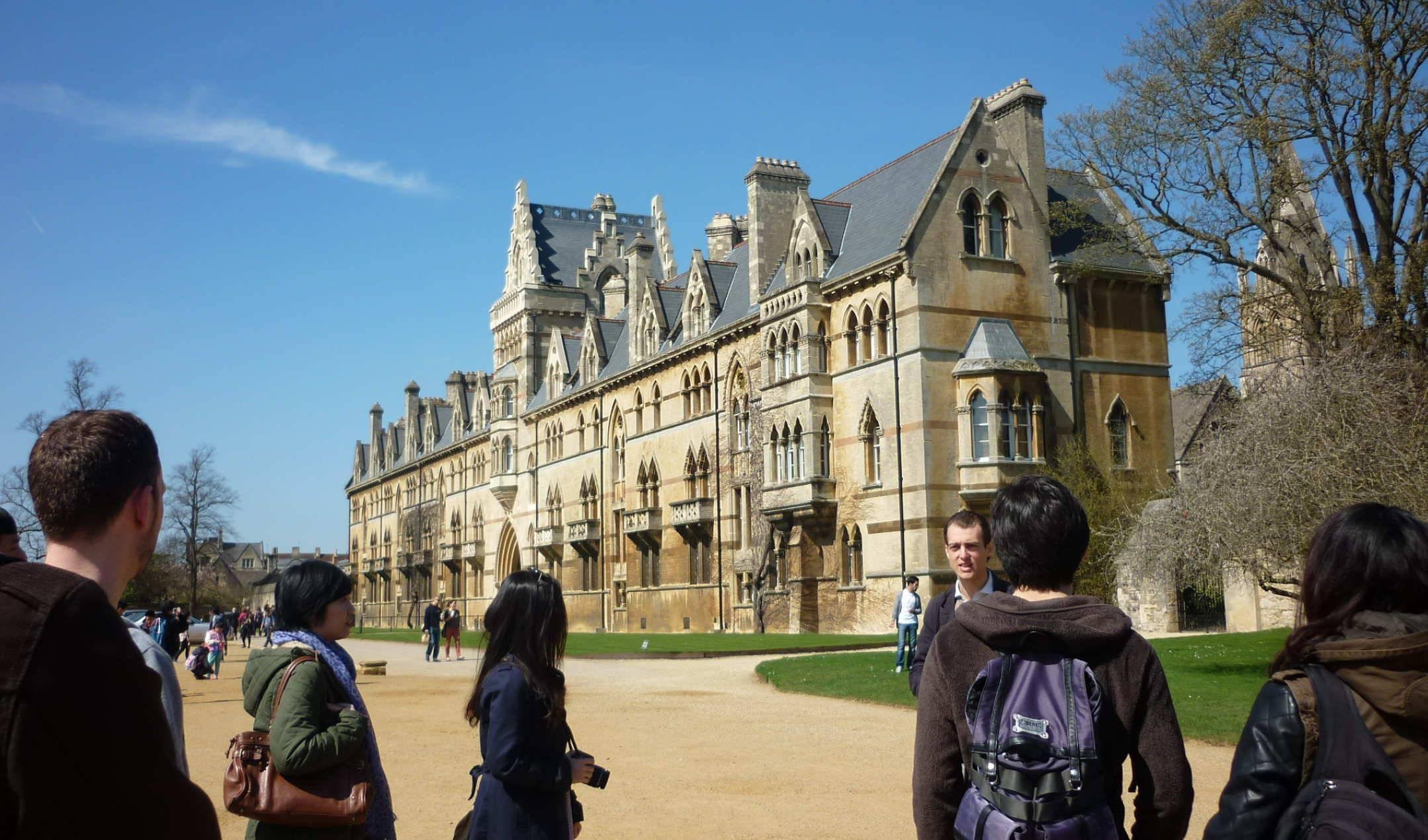 Образование в великобритании: традиции, инновации и возможности