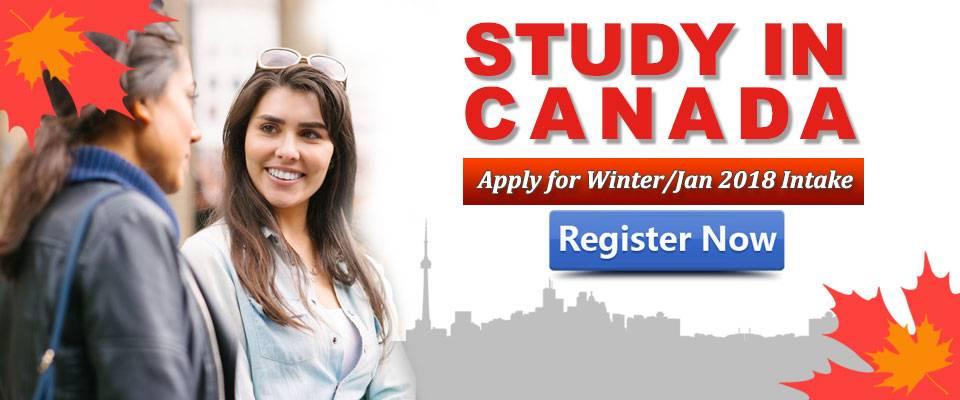 Образование в канаде: как поступить в канадский колледж — блог linguatrip