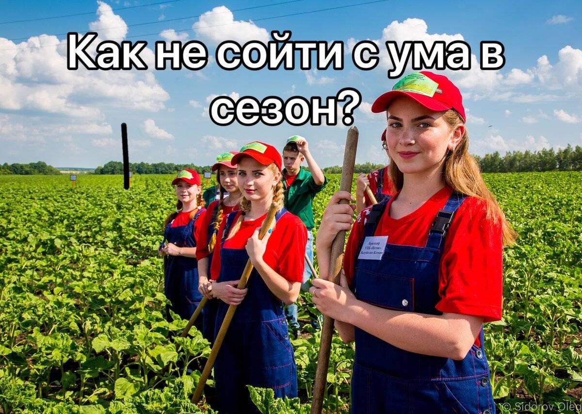 Работа в польше для русских – мигранту мир