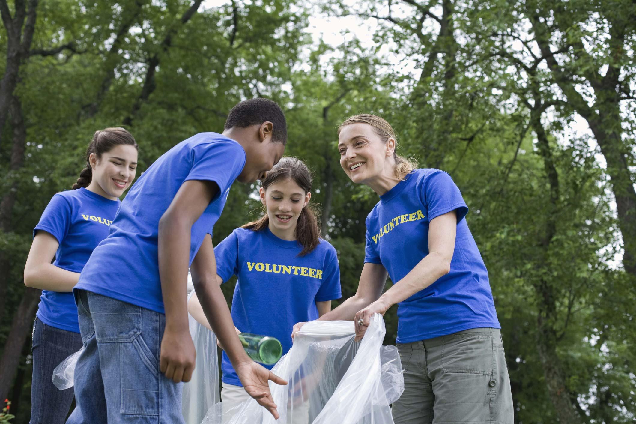 Среднесрочное и долгосрочное добровольчество: lmtv проекты - сфера