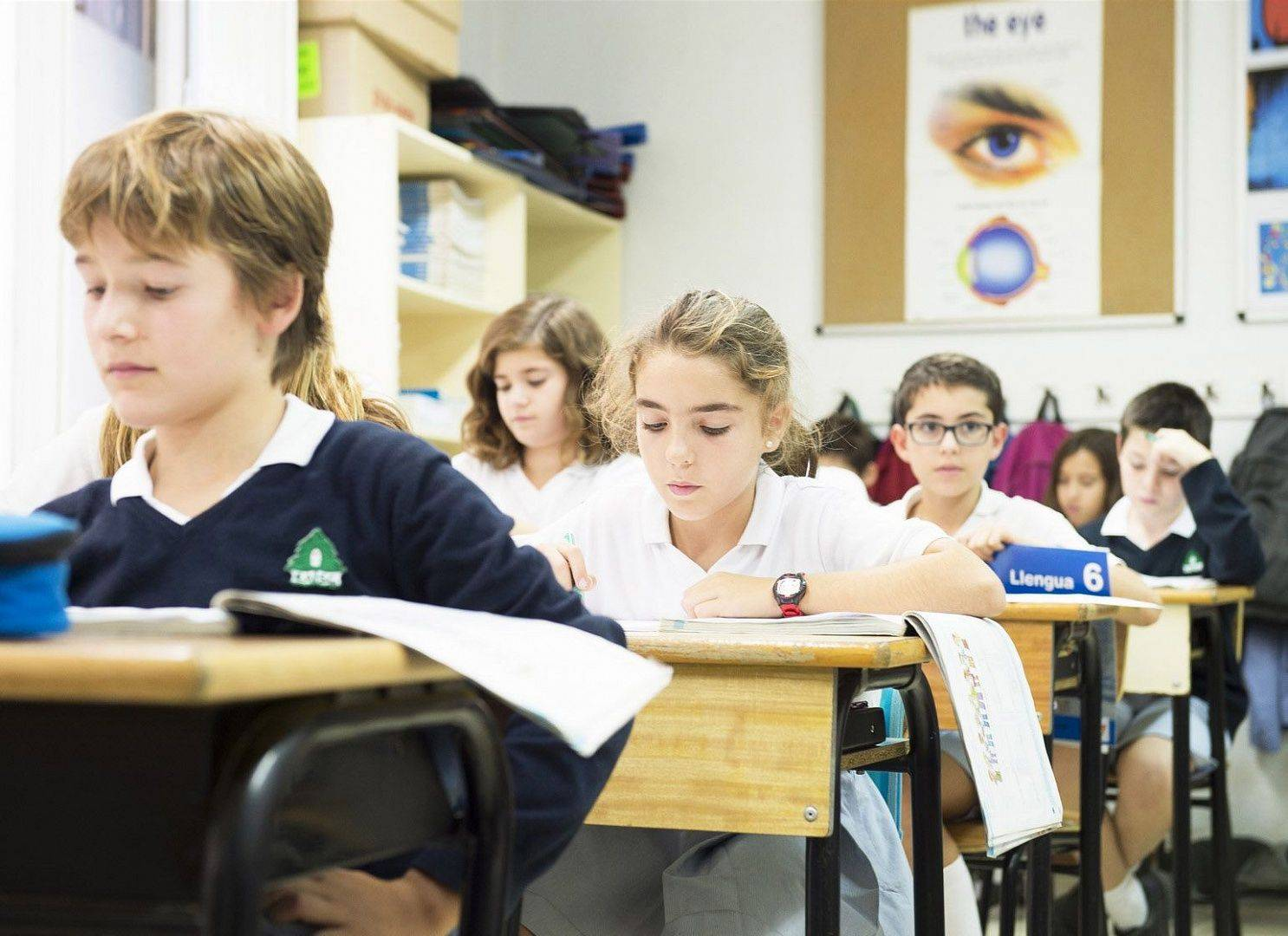 Российские школьники с 2021 года будут учиться по обновленным стандартам | новости