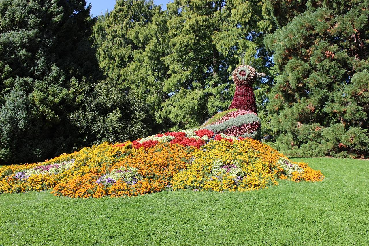 Остров майнау в германии: экзотические дервья и цвети, мини-зоопарк, сад приправ и бабочек