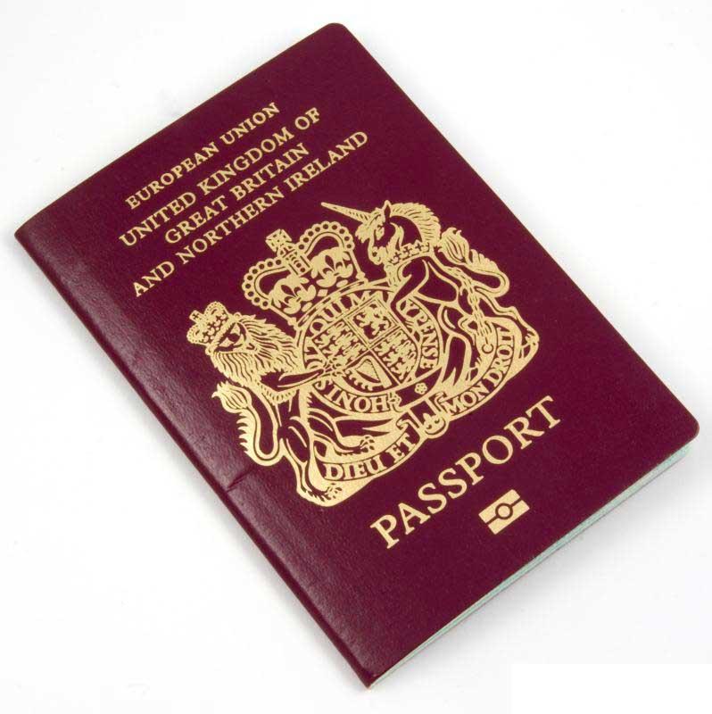 Какие страны разрешают двойное гражданство с россией (список) в 2021