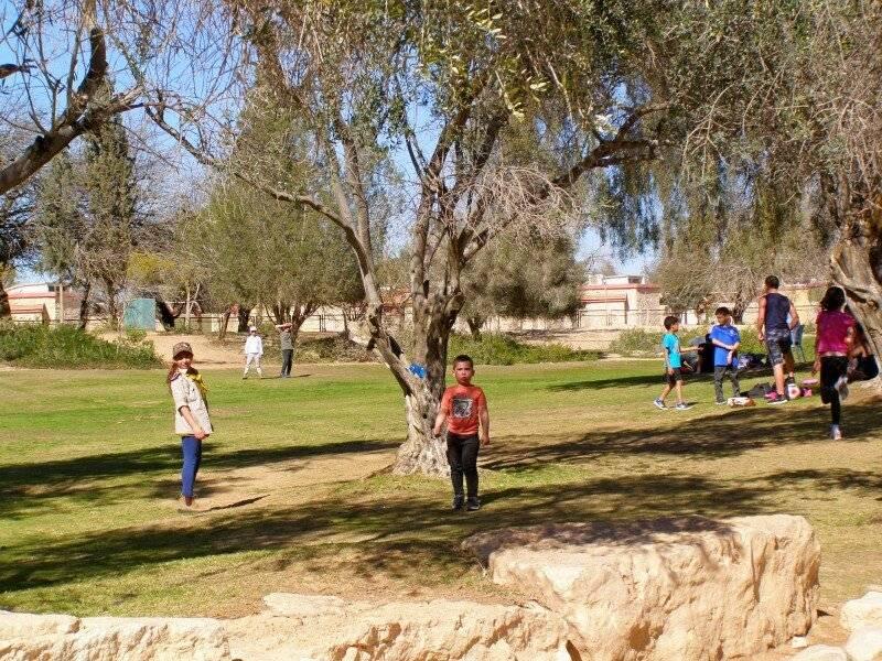 Кибуцы в израиле: условия проживания в 2019 году, отзывы