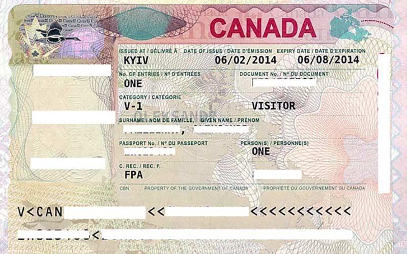 Всё о работе в канаде для граждан рф: пошаговый план действий
