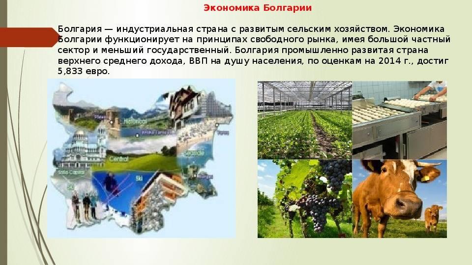 Промышленность болгарии: металлургия, машиностроение, энергетика